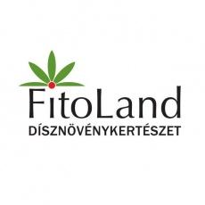 FitoLand Kertészet és Virágbolt - Belváros