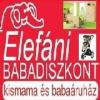 elefani képe